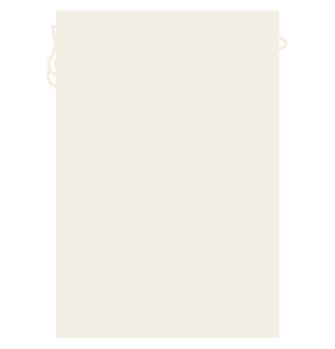 infografia_fresquita